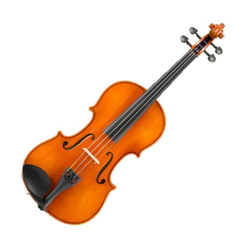 Example Violin