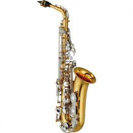 Alto Sax Example