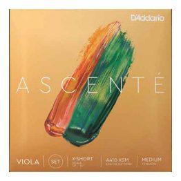 "Ascente 13""-14"" Viola Set"