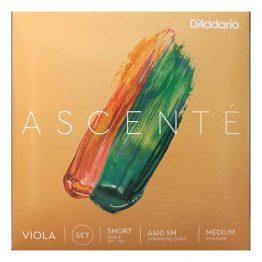 "Ascente 14""-15"" Viola Set"