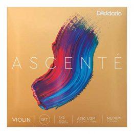 Ascente 1/2 Violin Set