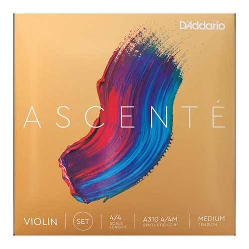 Ascente 4/4 Violin Set